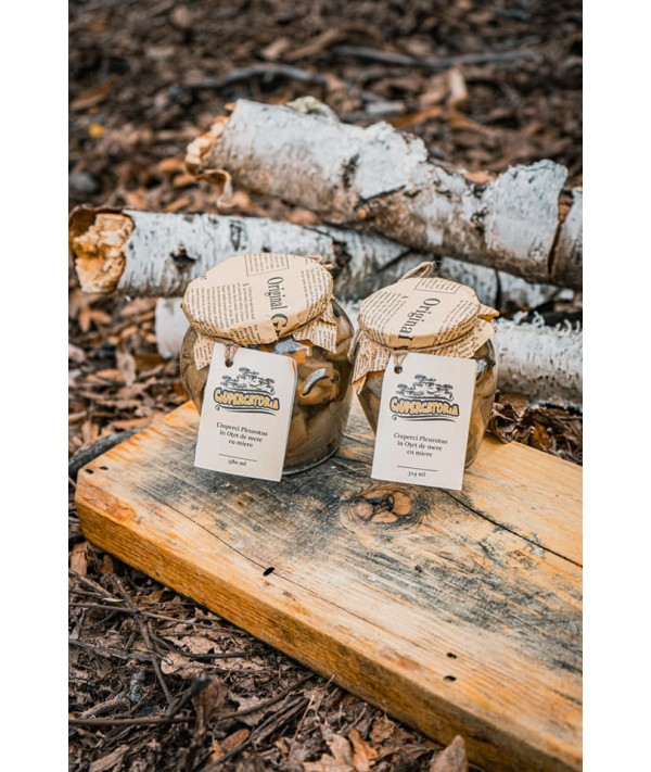 Ciuperci in otet de mere cu miere
