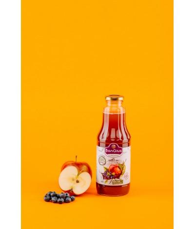 Suc natural din afine si mere